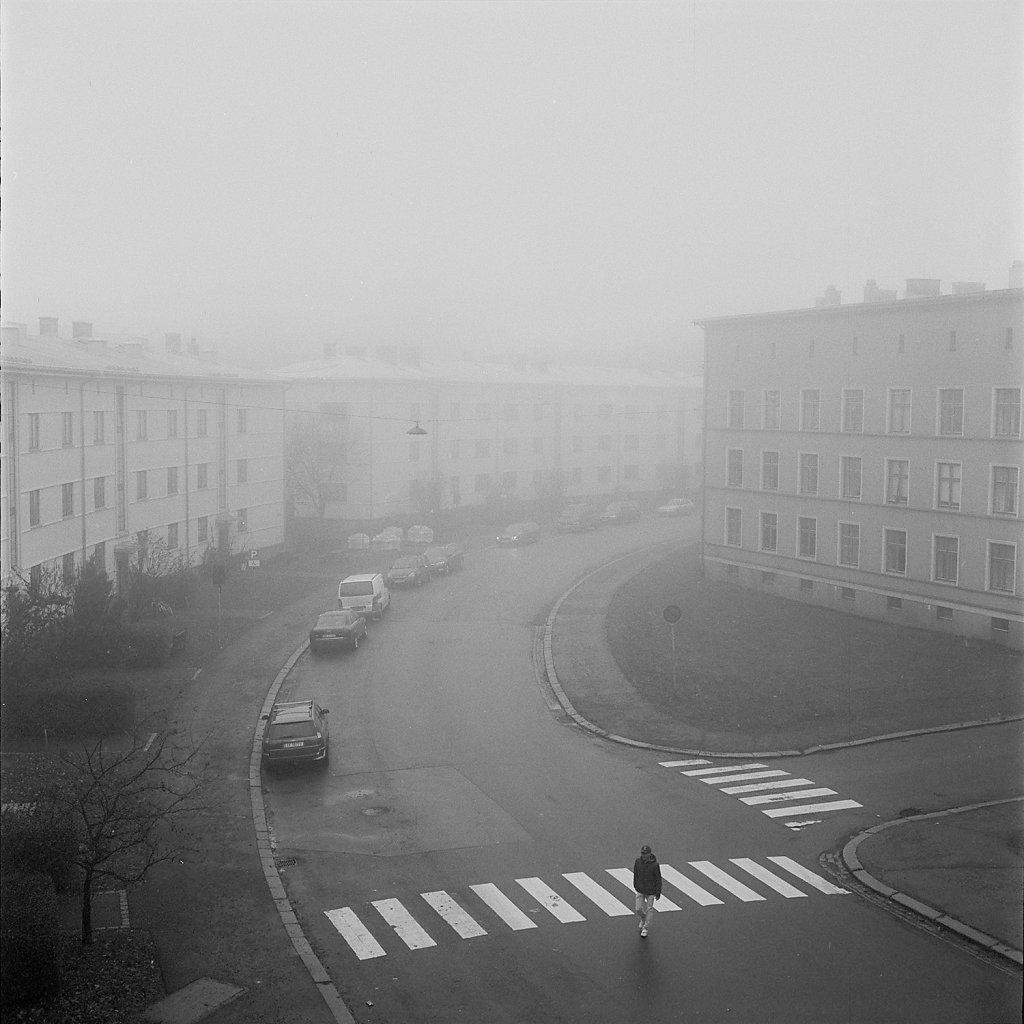 02-Olguin-Torshov02.jpg
