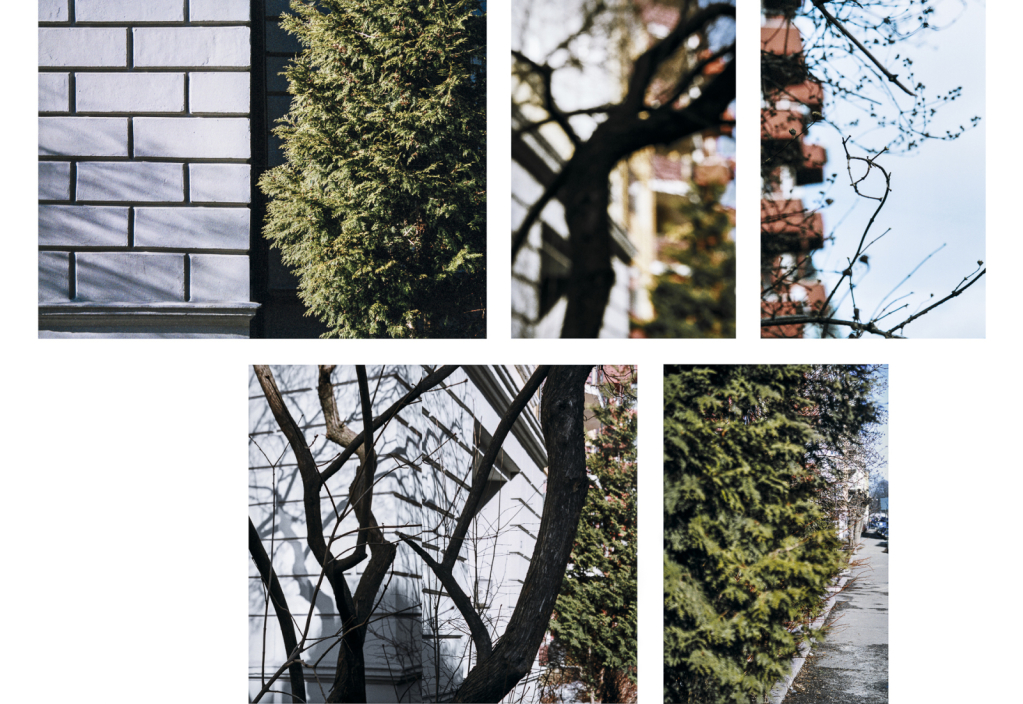 12-Huitfeldtsgate-1-100x130cm-2005.jpg